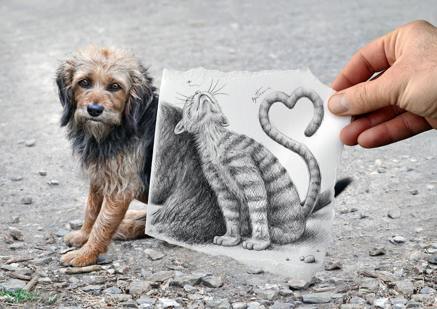 Dog & Cat by Ben Heine