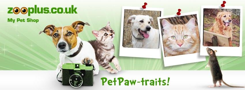 PetPaw-traits