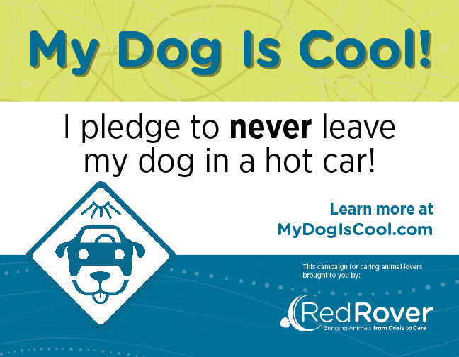 I pledge to never leave my dogs in a hot car! #MyDogIsCool