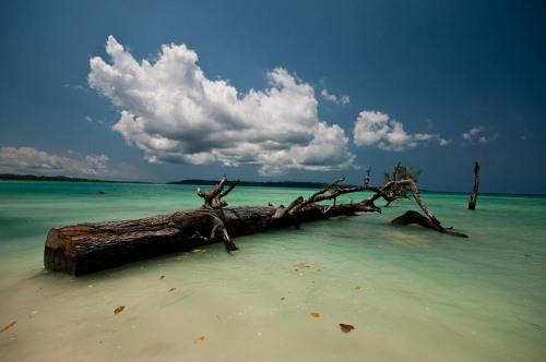 WPC Sea