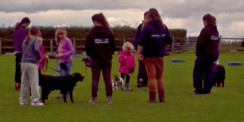 "Our first training session with ""rent a dog"" a lovely black lab"