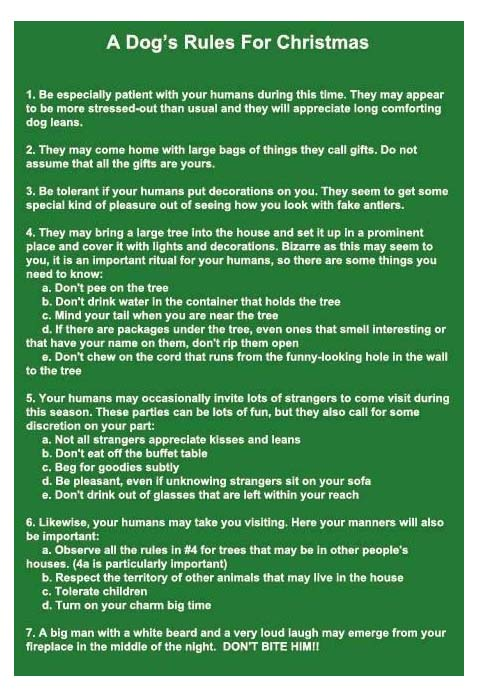 A Dog's rules for Christmas