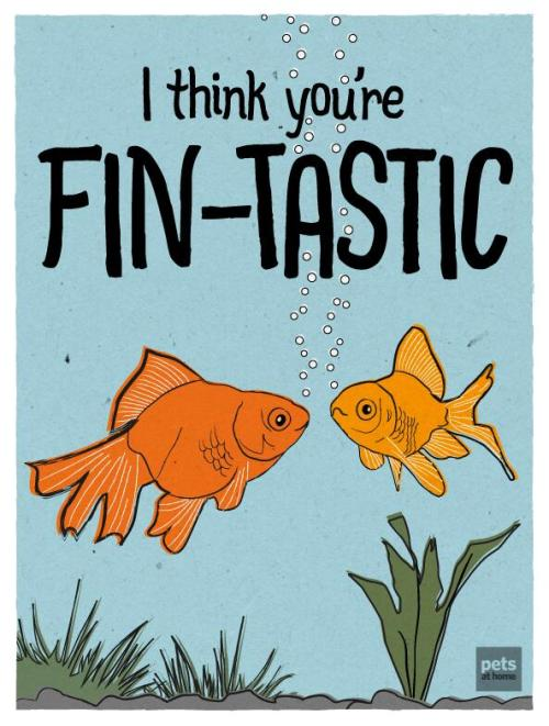 Fish Card from Pets At home
