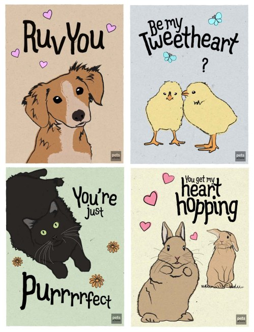 Pet Valentines Cards from Pets at Home