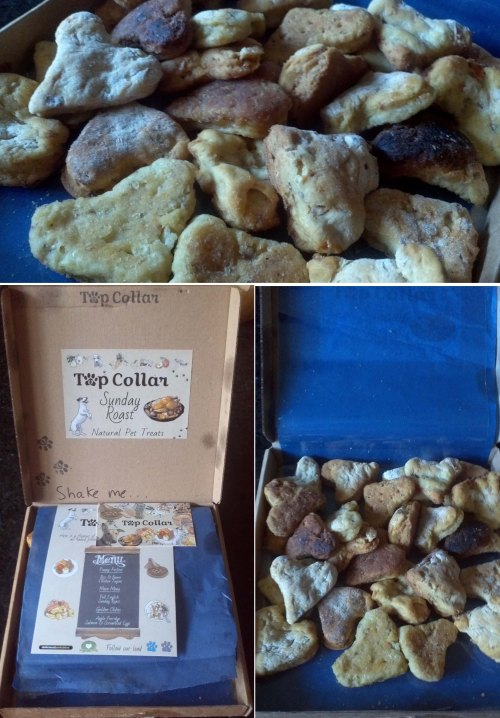 Top Collar Pet Treats