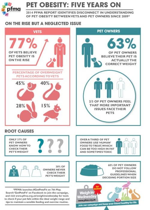 pfma-infographic-pet-obesity-five-years-on-march-2014