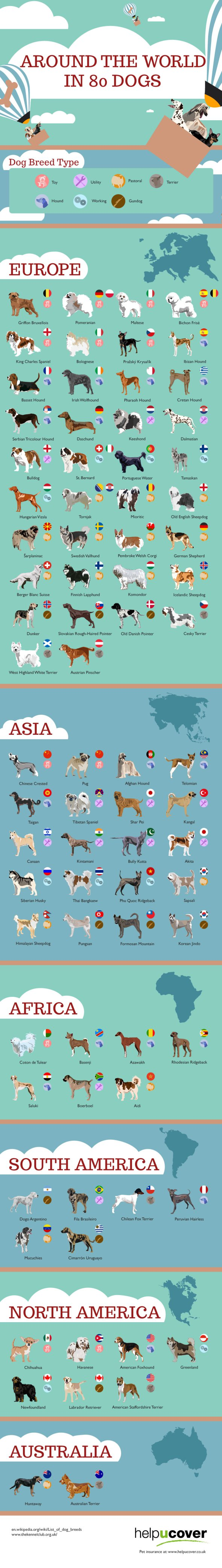 Infographic Around the world in 80 dogs