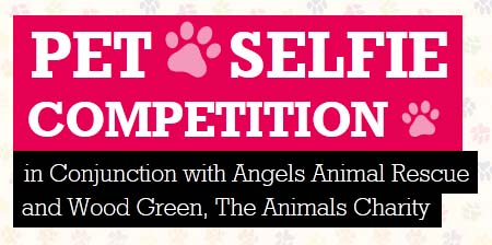 pet selfie competition from Buyagift