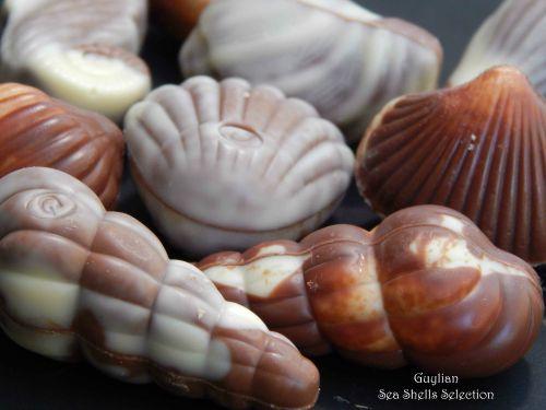 Guylian Sea Shells Selection