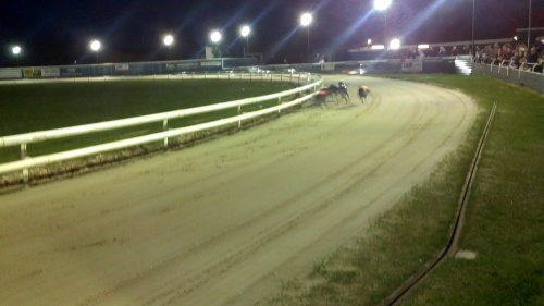 Evening at the Greyhound Racing Tracks