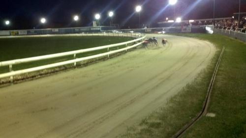 Evening at the Greyhound Racing Tracks