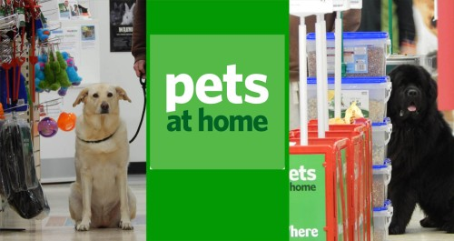 Lilly and Bunk 30 Day Pet Nutrition Challenge with Pets at Home