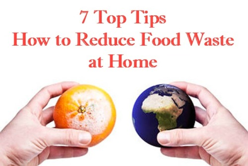 7 Top Tips How to Reduce Food Waste at Home