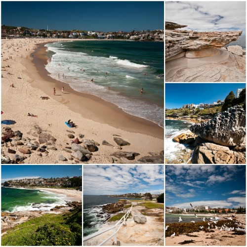 Coastal walk form Coogee to Bondi Beach