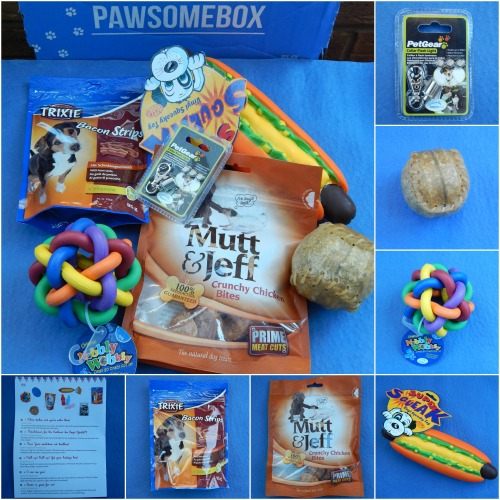 January Pawsomebox