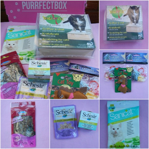 January Purrfectbox
