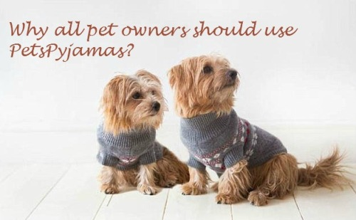 Why all pet owners should use PetsPyjamas