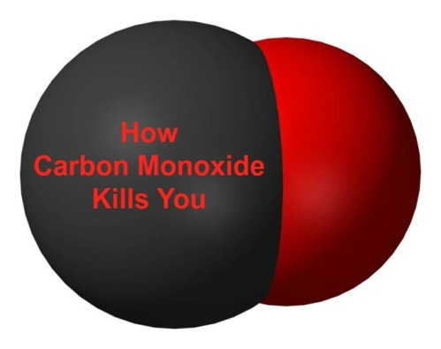 How Carbon Monoxide Kills You